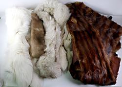 Lot of 2 Fox Stoles, Mink Belt and Fur Wrap