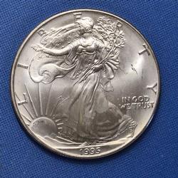 BU 1995 Silver Eagle, milk spot reverse