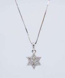 14K White Gold Star of David Diamond Necklace