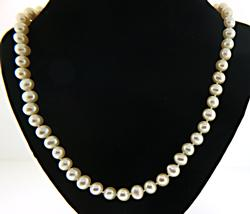 Creamy Fresh Water Pearl Necklace