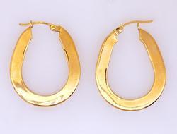 Shimmering Oblong Gold Hoop Earrings