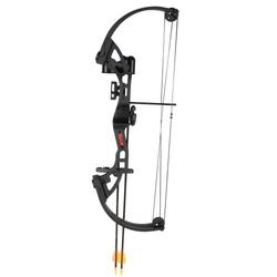 Bear Archery Brave Black RH Bow Set