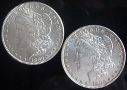 1882  And 1883 Frosty White BU Morgan Silver Dollars