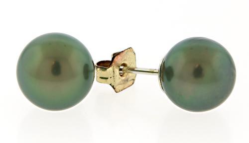 8.5mm Tahitian Pearl Earrings