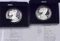 2002 & 2004 Proof Silver Eagles