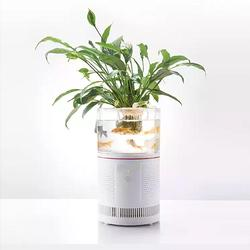 HEPA Desktop Ionizer Air Purifier Aquarium Filter