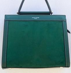 Unique Green Color Bag By David Jones