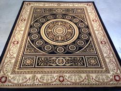 Classic French palace Design Area Rug 8'x10'