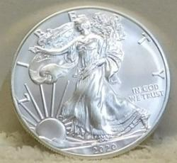 2020 Uncirculated Silver Eagle, GEM, Brand New !