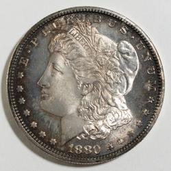 Frosty White 1880 S DMPL Morgan Dollar