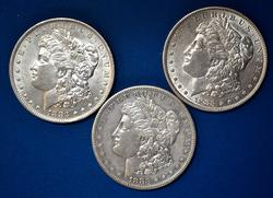1883 And 1883 O & S Morgans From A Near Full Set of Morgans