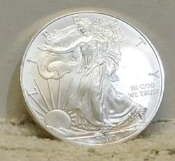 2010 Uncirculated Silver Eagle, one ounce Silver
