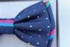 Stylish 100% Silk Bow Tie By Zianni