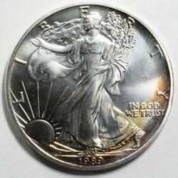 BU 1989 Silver Eagle