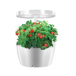 Indoor Plant Hydroponics Grow light Soilless