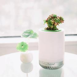 5W Air Purifier with Colorful Night Light