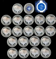 Roll of 20 NFC Chip Verified 1 oz. Pure Silver Rounds