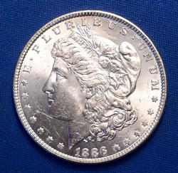 Top 100 VAM-1A1 Line in 6 1886 Morgan Silver Dollar BU