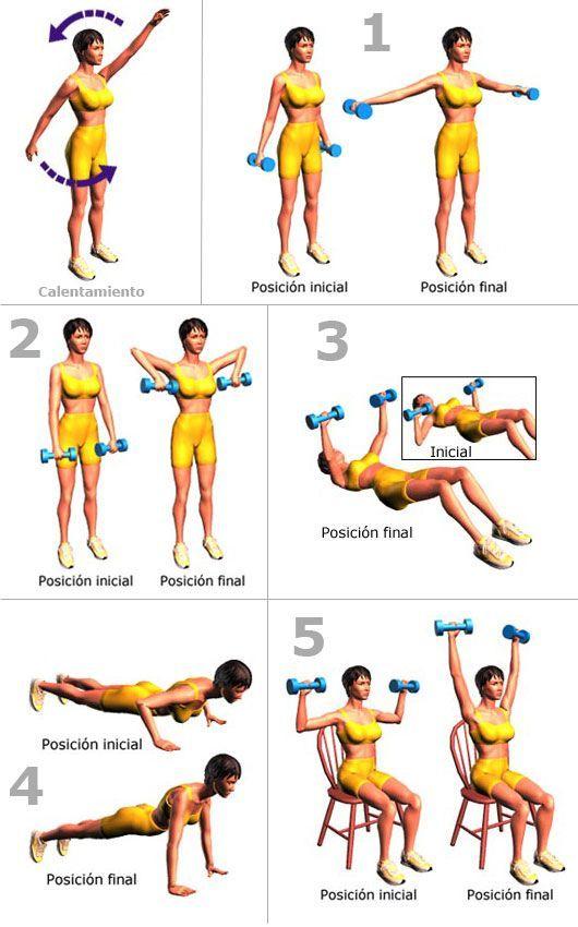 ejercicios-senos