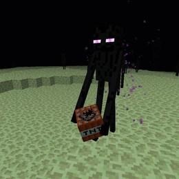 Facil: Que hace un Enderman? - ¿Cuanto sabes de Minecraft?