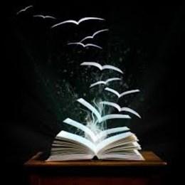 ¿Libro que me gustaría leer pero no sé si me gustará? - Ivi test
