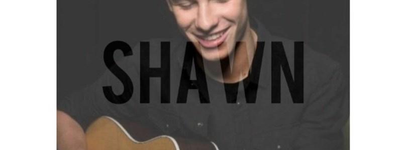 Cuanto sabes de Shawn Mendes