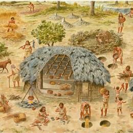 ¿Qué hacían con los productos que sobraban? - ¿Cuánto sabes de prehistoria?