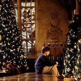 ¿Cuál de estos regalos NO recibió Harry en navidad? - Harry Potter y la Piedra Filosofal - Test