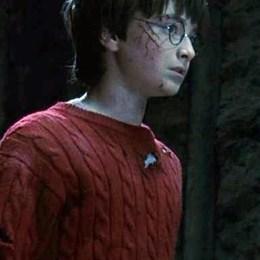 Título del último capítulo del libro de Harry Potter y la piedra filosofal: - Harry Potter y la Piedra Filosofal - Test