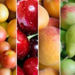 ¿Las frutas y verduras contienen colesterol?  -  Test Semana de la Salud: ¿Conoces los beneficios de cada alimento?