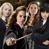 Preguntas y respuestas: ¿Qué chica de Harry Potter eres?