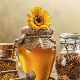 ¿Cuáles son las abejas encargadas de elaborar la miel? - ¿Cuánto sabemos sobre el maravilloso mundo de las abejas?