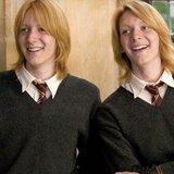 ¿quien es tu novio de harry potter?