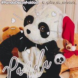 de quien gusta panda - cuanto sabes de yolo aventuras