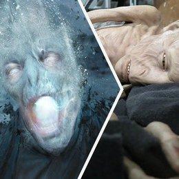 El mayor miedo de Voldemort es... - Test: ¿Cuanto sabes de Harry Potter?