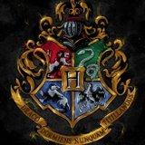 Quien es tu novio de hogwarts 😻🤩