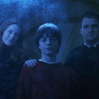 ¿Como creía Harry que habían muerto sus padres hasta que Hagrid le contó la verdad? - ¿Cuanto sabes de Harry Potter y la piedra filosofal?