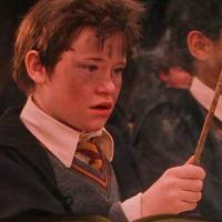 ¿En que quiere convertir Seamus el agua?  - ¿Cuanto sabes de Harry Potter y la piedra filosofal?