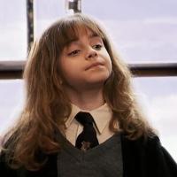 ¿Que pierde Neville en el tren? - ¿Cuanto sabes de Harry Potter y la piedra filosofal?