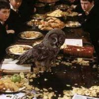 ¿Que le trae la lechuza a ron? - ¿Cuanto sabes de Harry Potter y la piedra filosofal?