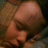 ¿Quien se encargó de llevar a Harry a casa de sus tíos cuando era un bebé? - ¿Cuanto sabes de Harry Potter y la piedra filosofal?