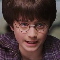 ¿Con que animal habla Harry en el zoo? - ¿Cuanto sabes de Harry Potter y la piedra filosofal?