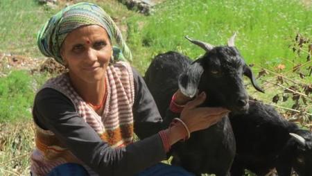 Rural Transformation