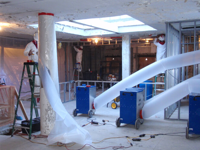 Cost Of A Mold Removal Service Estimates Prices