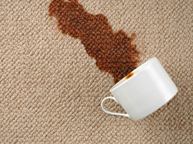 Cost To Clean A Carpet Estimates Prices Amp Contractors
