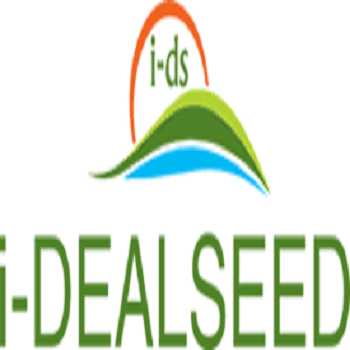Ideal Seed