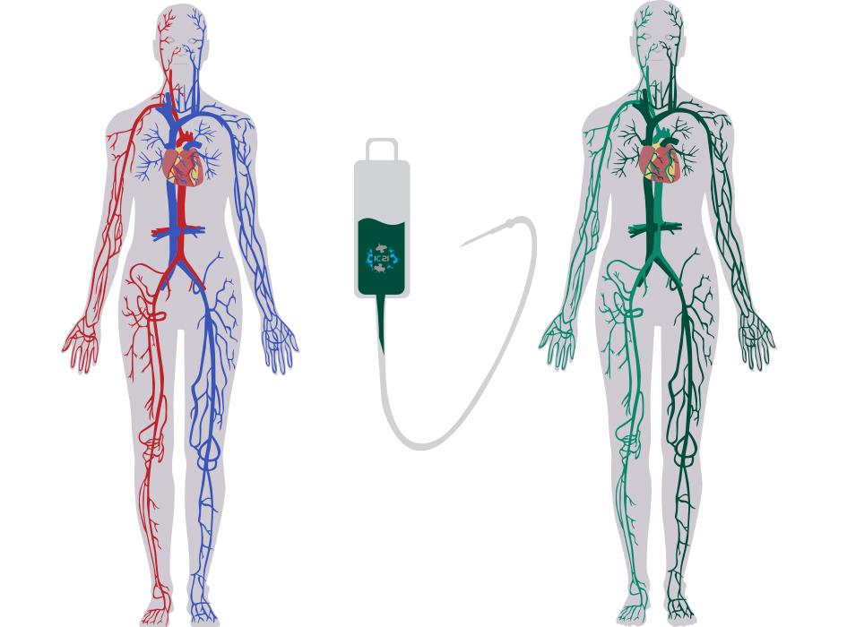 liposomal icg, pdt therapy, photodynamic therapy, alternative cancer,