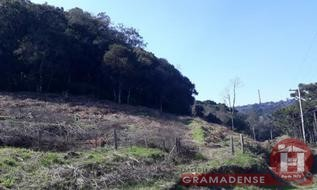 Área de Terra em Gramado, bairro Piratini