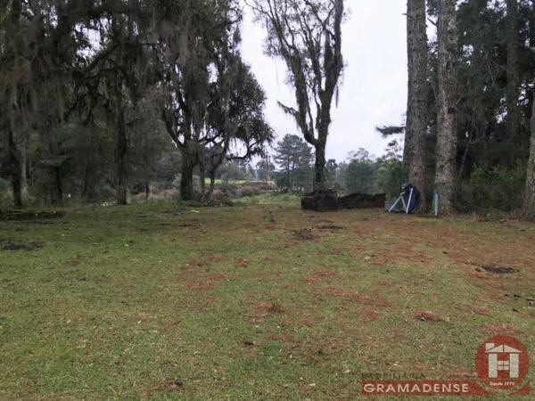 Imovel-area-de-terra-gramado-%c3%81r03332-31720