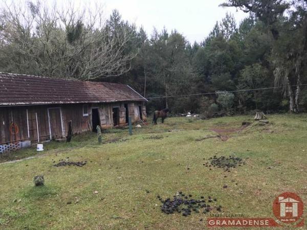 Imovel-area-de-terra-gramado-%c3%81r03332-31722